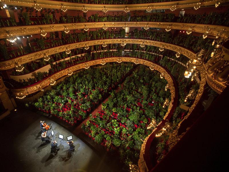 Barcelone : un concert insolite a eu lieu face à… 2 000 plantes