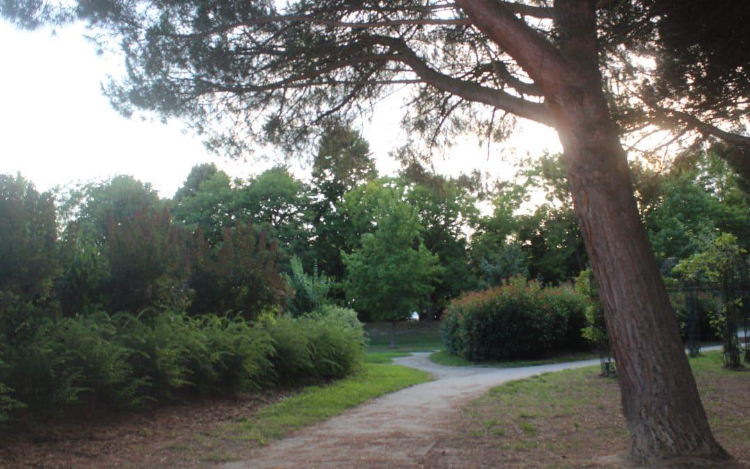 Toulouse : deux collectifs techno organisent un open air intimiste au parc de la Grande Plaine