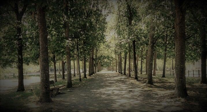 Parc de la Grande Plaine